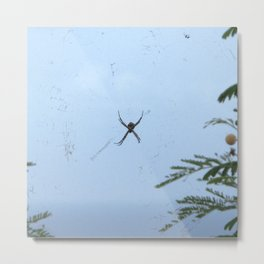 Watercolor Spider, Golden Orb Spider 05, St John, USVI Metal Print