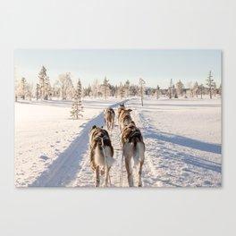 Frozen Wonderland Canvas Print