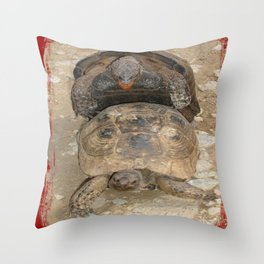 Humorous Mating Tortoises Throw Pillow