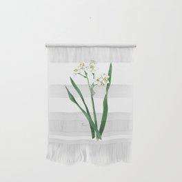 Cluster Daffodils Botanical Illustration Wall Hanging