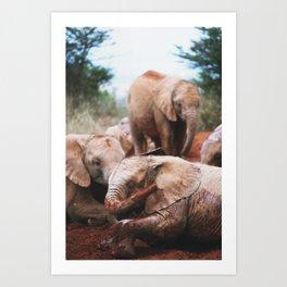 Baby elephants Art Print