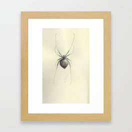 Spider Framed Art Print