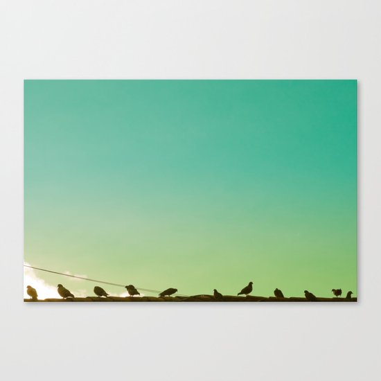 Birds and retro turquoise sky Canvas Print