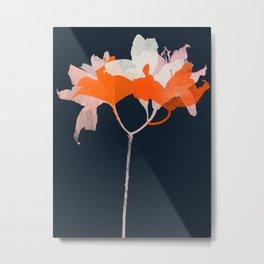 lily 20 Metal Print