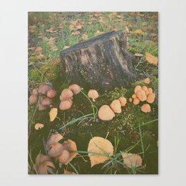 Mushroom Village Canvas Print