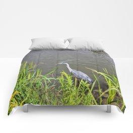 Beautiful Blue Heron Comforters