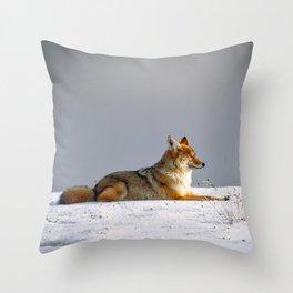 Feelin' Foxy Throw Pillow