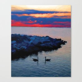 Two Geese Canvas Print