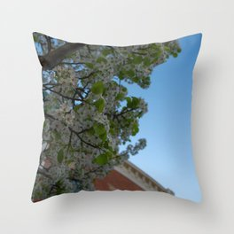 another perspective Throw Pillow