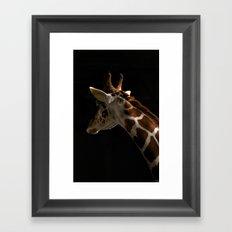 Giraffe2 Framed Art Print