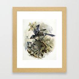 Vintage Winter Jays Framed Art Print