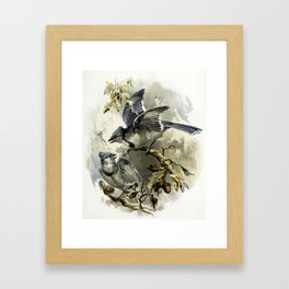Vintage Winter Jays Framed Art Print