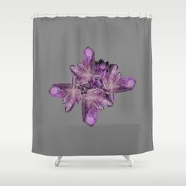 LIGHT PURPLE AMETHYST GEMSTONE CRYSTALS GREY ART Shower Curtain