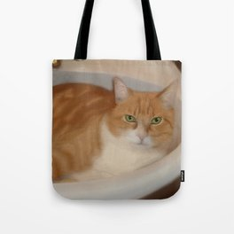 Cats love sinks! Tote Bag