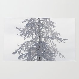 Yellowstone National Park - Ice Covered Tree Rug