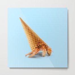 Hermit Cone Crab Metal Print