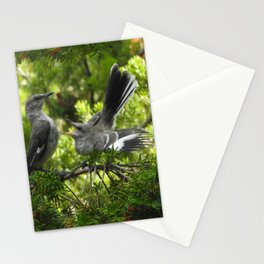 Hangry Birds Stationery Cards