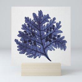 Seaweed 7 Mini Art Print