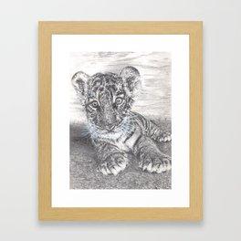 Fluke - Baby Tiger Cub Framed Art Print
