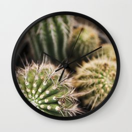 Cactus in Green & Gold Wall Clock
