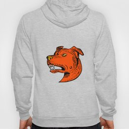 Angry American Staffordshire Bull Terrier Etching Color Hoody