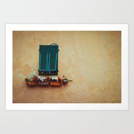 A window with green opersianas and pots with flowers. on an old, peeling salmon-colored wall. Art Print