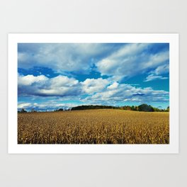 Rolling Fields Art Print