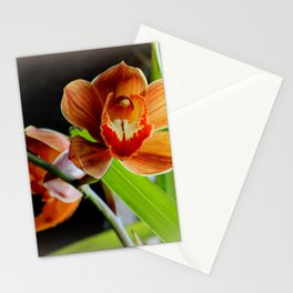 Cinnamon Iced T Stationery Cards