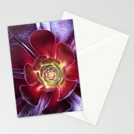Red Succulent Stationery Cards
