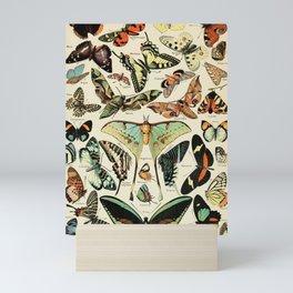 French Vintage Butterflies Chart Adolphe Millot Papillons Larousse Pour Tous Poster  Mini Art Print