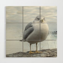 Seagull Model Wood Wall Art