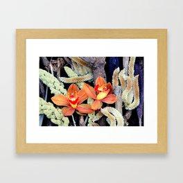Gone To Seeds Framed Art Print