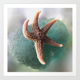 Starfish on Ocean Blue Sea Glass Art Print