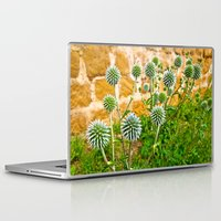 globe Laptop & iPad Skins featuring Globe thistles by Pirmin Nohr