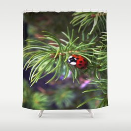 The Ladybird Shower Curtain