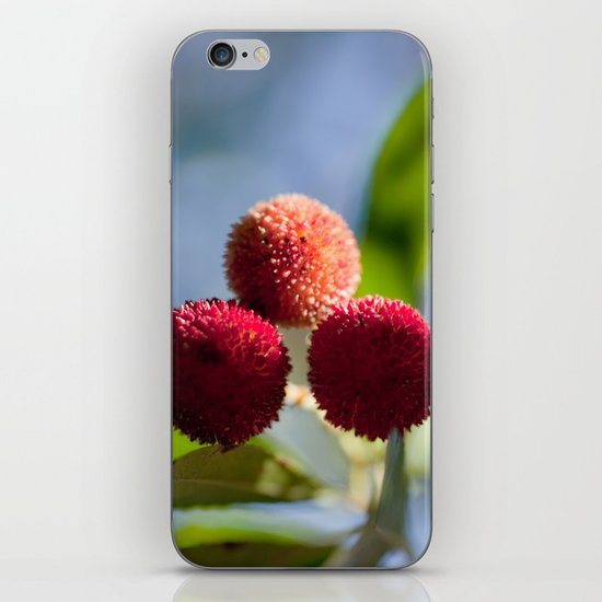 Strawberry tree fruits 8697 iPhone & iPod Skin
