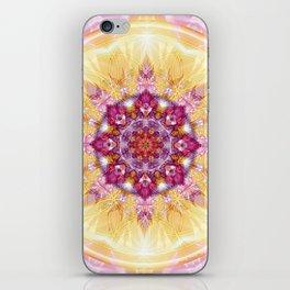 Flower of Life Mandalas 14 iPhone Skin