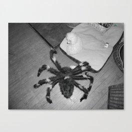 My worst fear Canvas Print