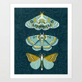 Lepidoptery No. 8 by Andrea Lauren  Art Print