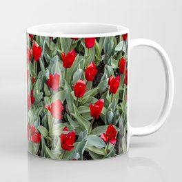 Red Tulips Blooming in Spring in Amsterdam, Netherlands Coffee Mug
