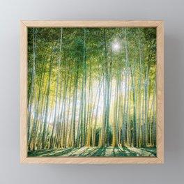 Bamboo Forest Fine Art Print Framed Mini Art Print