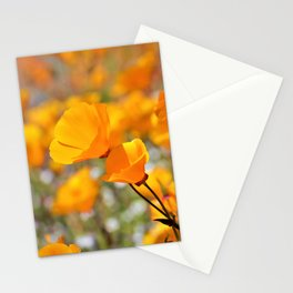 California Gold Poppies by Reay of Light Photography Stationery Cards