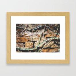 Cactuswall Framed Art Print