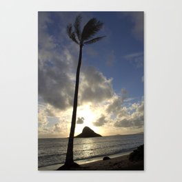 Palm at Mokoli'i Canvas Print
