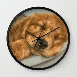 Sleeping Puppy Wall Clock