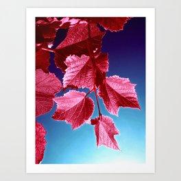 red tree IV Art Print