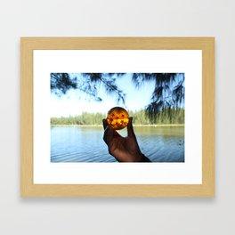 seven star at lake. Framed Art Print