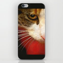 You have my undivided attention iPhone Skin