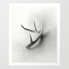 Lost and Found - Deer Antler Pencil Drawing Art Print