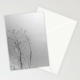Nature in The City Stationery Cards